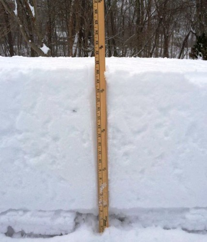 Fran Gumkowski solved the problem for us by supplying this photo, which tells us that 21 1/2 inches accumulated.